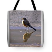 Robin Reflection Tote Bag