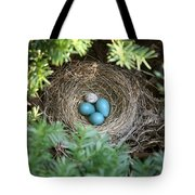 Robins Nest And Cowbird Egg Tote Bag