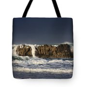 Natures Wonders Tote Bag