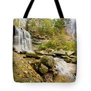Rock Glen Falls Tote Bag by Cale Best