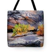 Rock Shrub And Bluff At Cumberland Falls State Park Tote Bag