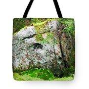Rock Spirits Keeping Secrets Tote Bag