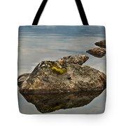 Rockery Tote Bag