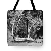 Rocks And Trees In Black And White Tote Bag