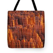 Rocky Canyon Tote Bag