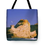 Rocky Coast Of Cape Kiwanda State Tote Bag