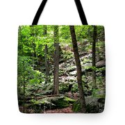 Rocky Forest Of Chatfield Tote Bag