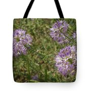 Rocky Mountain Bee Plant Tote Bag