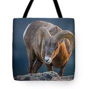 Rocky Mountain Big Horn Ram Tote Bag