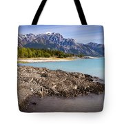 Rocky Mountain Bliss Tote Bag