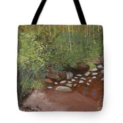 Rocky Mountain Creek Tote Bag by Ginny Neece