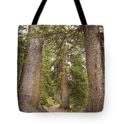 Rocky Mountain Forest Walk Tote Bag