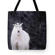 Rocky Mountain Goat Tote Bag
