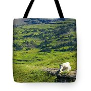 Rocky Mountain Goat Glacier National Park Tote Bag