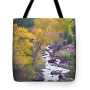 Rocky Mountain Golden Canyon Scenic View Tote Bag