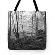 Rocky Road Tote Bag