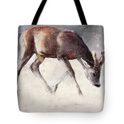 Roe Buck - Winter Tote Bag by Mark Adlington