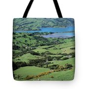 Rolling Fields With Grazing Sheep Tote Bag