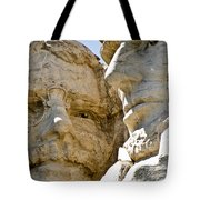 Roosevelt On Mt Rushmore National Monument Tote Bag