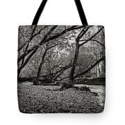 Rooted Within The Gravel Tote Bag