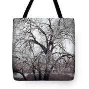 Roots And Flutes  Tote Bag