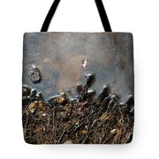 Roots In Water Tote Bag