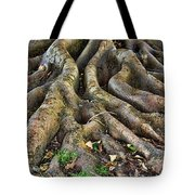 Roots Of Glory Tote Bag