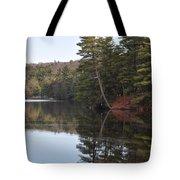 Rope Swing On Bear Creek Lake Tote Bag