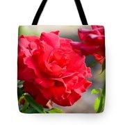 Rosas Roja Tote Bag