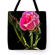 Rose And Buds Tote Bag
