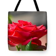 Rose And Her Buds Tote Bag