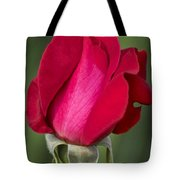 Rose Flower Series 1 Tote Bag