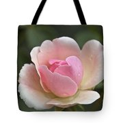Rose Flower Series 12 Tote Bag