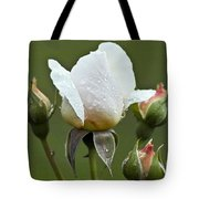 Rose Flower Series 5 Tote Bag