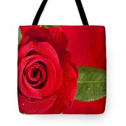 Rose Flower Wet 1 B Tote Bag