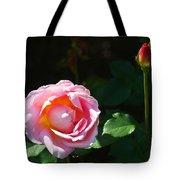 Rose In Chicago Botanic Garden Tote Bag