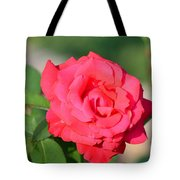 Rose In The Morninglight Tote Bag