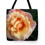 Rose Of Many Pastels Tote Bag