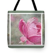 Rose Triptych 11 Tote Bag