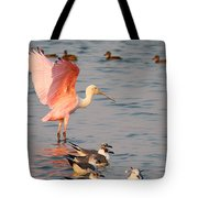 Roseate Spoonbill At The Bay Tote Bag