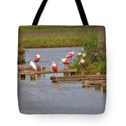 Roseate Spoonbills And Snowy Egrets Tote Bag
