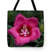 Rosey Blossom Tote Bag