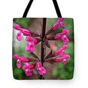 Rosey Leaf Sage Tote Bag