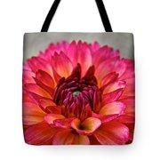 Rosy Dahlia Tote Bag