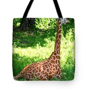 Rothschild Giraffe Tote Bag