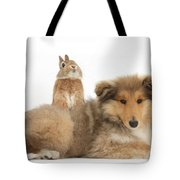 Rough Collie Pup With Sandy Netherland Tote Bag