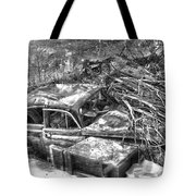 Routes In Roots  Tote Bag
