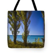 Row Of Cypress Trees At Point Betsie In Michigan No.0924 Tote Bag