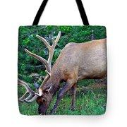 Royal Bull Elk Tote Bag