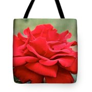 Royal Red Rose Tote Bag